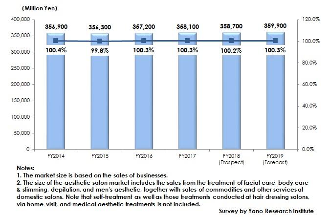 Transition of Aesthetic Salon Market Size